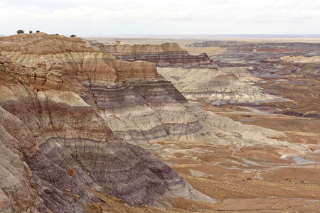 ridges: Colorful Ridges in the Painted Desert of Petrified Forest National Park of Arizona