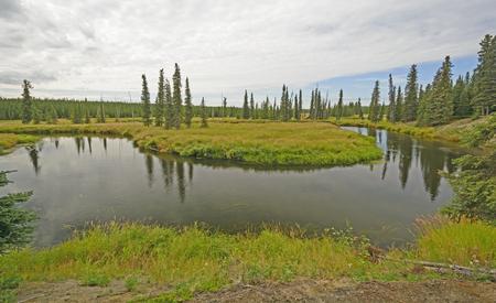 oxbow bend: Oxbow bend in the Moose River of the Kenai Peninsula of Alaska Stock Photo