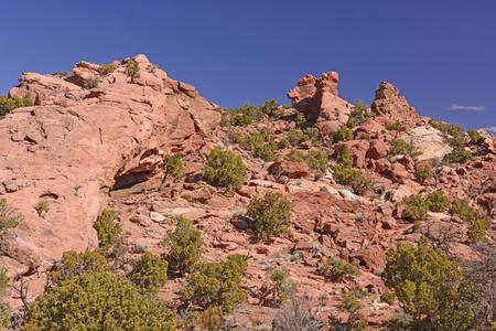 red rocks: Red Rocks landscape in the Desert on Canyonlands National Park in Utah