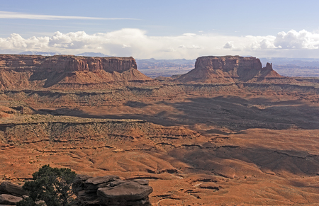 mesas: Plateaus and Mesas of the West in Evening Light in Canyonlands National Park in Utah