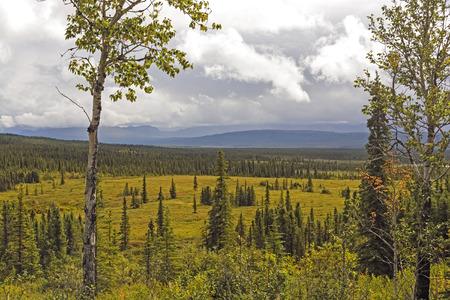 denali: Storm Clouds over a Verdant Valley near Wonder Lake in Denali National Park in Alaska Stock Photo