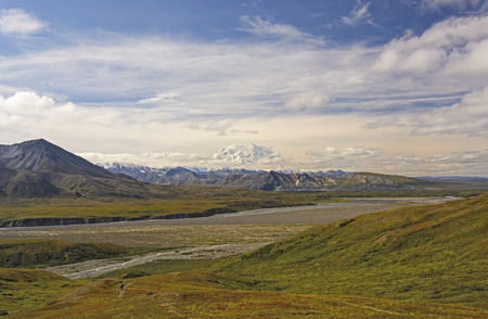 peaking: Denali Peaking out of the Clouds across the Tundra in Denali National Park in Alaska