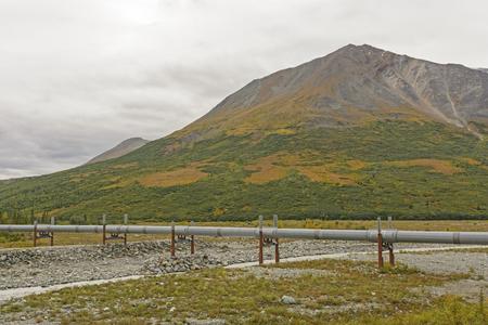 alpine tundra: Alaska Oil Pipeline Crossing Miller Creek Near the Richardson Highway In Alaska