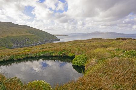 Colorful paysage sur l'île du Cap Horn en tierrra del Fuego, Chili Banque d'images - 59457115