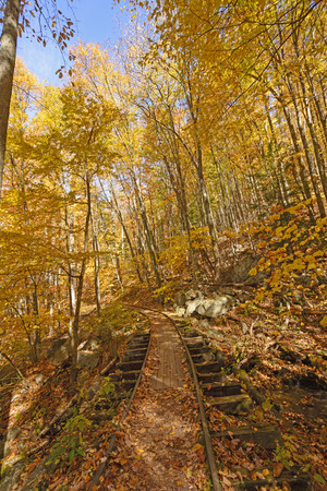 forest railway: Old Railway in the Fall Forest along the Blue Ridge Parkway in Virginia Stock Photo