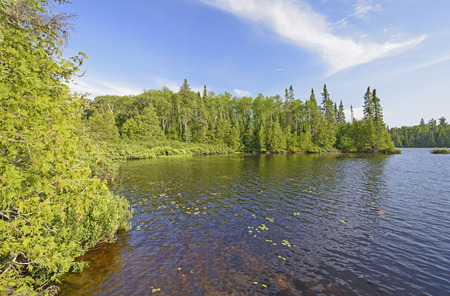 waters: Quiet Cove in Horseshoe Lake in the Boundary Waters in Minnesota