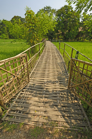 Bamboo Bridge over a Rice Paddy in Assam, India Stock Photo