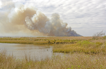 wildfire: Wildfire in the Bayou in the Sabine National Wildlife Refuge in Louisiana Stock Photo