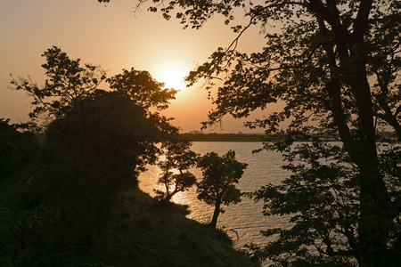 subtropical: Sunset in a Subtropical Wetland in Kaziranga National Park in India