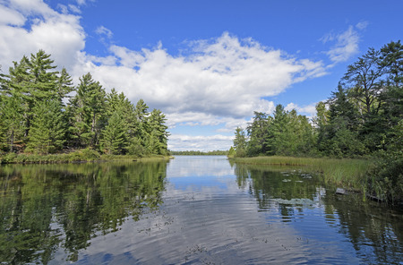 boundary: Quiet Cove in Canoe Country on Carp Lake in Quetico Provincial Park Stock Photo