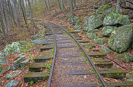 Old Railroad Bed in the Forest along the Blue Ridge Parkway in Virginia