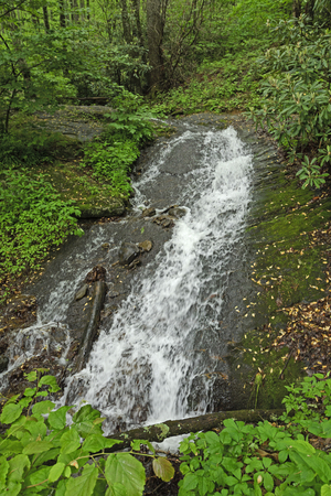 Rushing Cascade Hidden in the Forest along the Blue Ridge Parkway in North Carolina