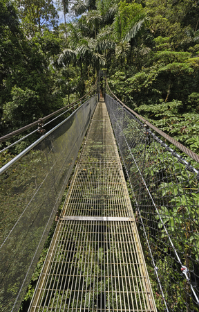 Hanging Bridge in a the Mistico Arenal Cloud Forest in Costa Rica