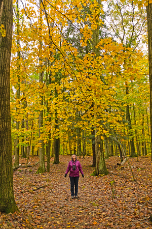 Revelling in the Beauty of Fall in Potawatomi State Park in Wisconsin. Stock Photo