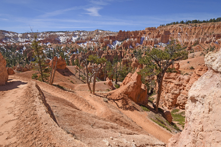 Trail Heading Down into the Bryce Canyon in Bryce Canyon National Park in Utah