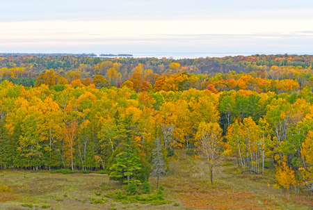 Fall Colors on a Remote Lake Shore in Potawatomi State Park in Wisconsin