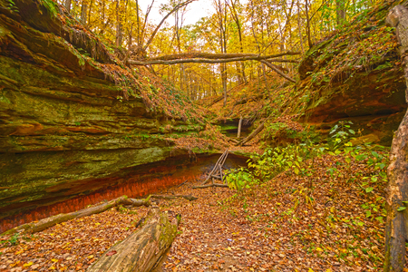 Hidden Canyon in the Fall Forest in Wildcat Den State Park in Iowa