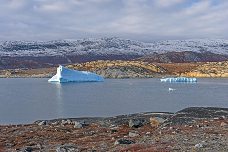 Icebergs in a Quiet Lagoon in the Arctic near Eqip Sermia in Greenland