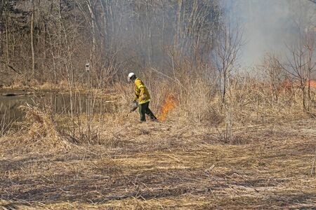 Using the Drip Torch to Start a Controlled Burn in Spring Valley Nature Center in Schaumburg, Illinois