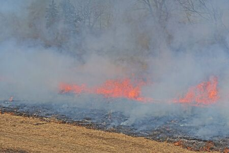 Fire Light Coming Through the Smoke in  Prescribed Prairie Burn in Spring Valley Nature Center in Schaumburg, Illinois 免版税图像
