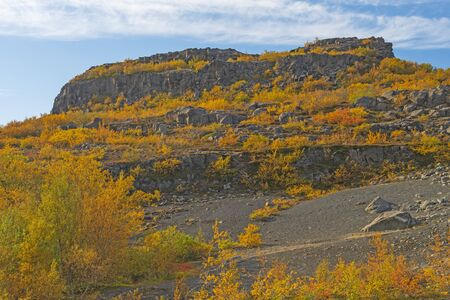 Fall Colors Covering a Volcanic Cliff in  Hljodaklettar National Park in Northern Iceland