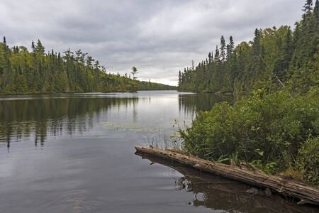 Looking Down a Calm Wilderness Lake on LIzz Lake in the Boudnary Waters in Minnesota