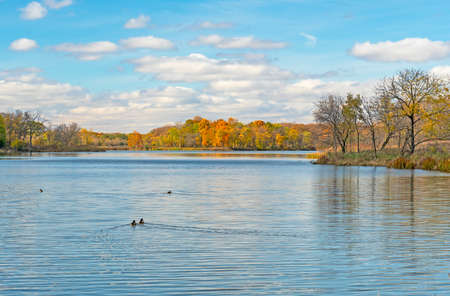 Serene Lake in the Autumn at the Ned Brown Preserve in Illinois