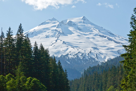 mount baker: View of Mount Baker towering over a forest of green trees Stock Photo