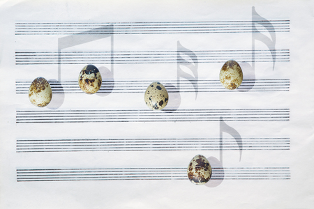 Japanese quail eggs in front of a blank six-stave music paper are casting shadows in the shape of musical notes.