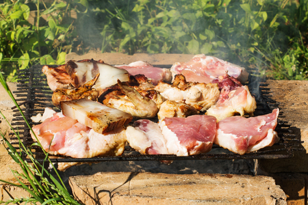 Simple and primitive barbecue. Pork steaks, chicken wings and thighs, and a bacon on a grill grate on top of bricks. Raw and grilled pieces of meat. Selective focus.