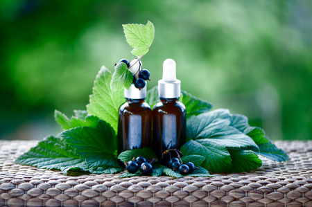 Bottles with blackcurrant oil, fresh berries and  leaves on a natural green background,  bio, organic , nature cosmetics concept