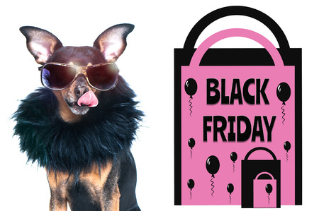 Black friday concept, photo and illustration, stylish dog with glasses licked, next to the packages and the inscription - black friday. 写真素材