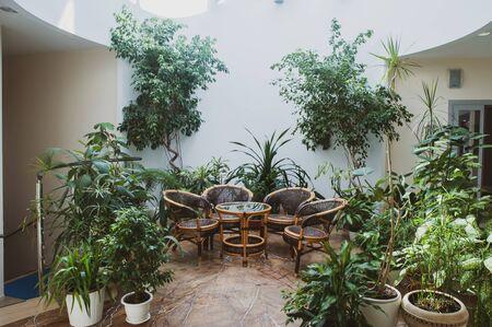 Korbmöbel aus Rattan umgeben von Grünpflanzen in einer geräumigen Halle Standard-Bild