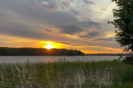 Sunset on a beautiful lake, in the foreground overgrown with grass. Climate Northern Europe Фото со стока