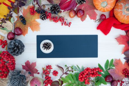 Autumn background with maple leaves, apples and pumpkins, mountain ash and plums. Frame  on the autumn theme   with copy space. Mockup for autumn offers. Top view, flat lay