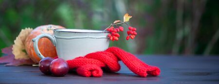 Creative photo on an autumn theme, Stylish cup in a red scarf with autumn fruits and berries. The theme of comfort and warmth in the fall Imagens