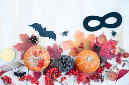 Halloween and Autumn Theme,  background with pumpkins, mountain ash  spiders and bat.  Top view, flat lay