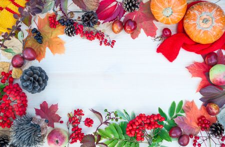 Herbsthintergrund mit Ahornblättern, Äpfeln und Kürbissen, Eberesche und Pflaumen. Rahmen zum Thema Herbst mit Kopienraum. Mockup für Herbstangebote. Ansicht von oben, flach Standard-Bild