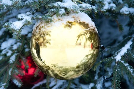 Large Christmas ball on a snow tree, the theme of winter, new year, comfort