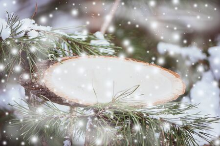 Wooden plate for inscriptions on a snowy fir branch, place for text, mocap Theme of winter and new year