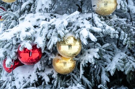 Decorated Christmas tree in the forest, in the snow . The theme of the new year