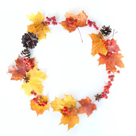 Wreath of autumn leaves, berries and cones on a white background, flat lay, space for text