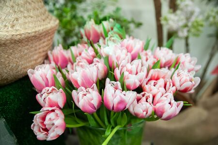 Bouquet of soft pink tulips.  Ggreeting card for mothers day, 8 March  Hello Spring  스톡 콘텐츠