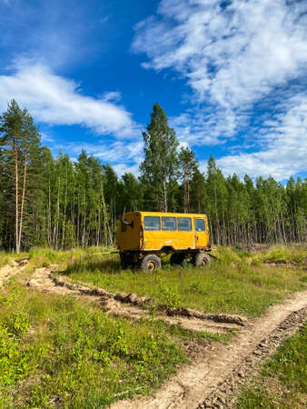 Yellow construction trailer, old bus in the wild in the forest Banque d'images