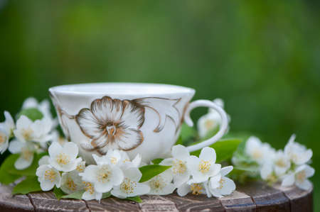 Beautiful summer composition of a cup of tea and Jasmine flowers on a natural green background, a concept of good morning, summer mood, happiness Banque d'images