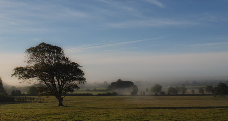meath: among the fields