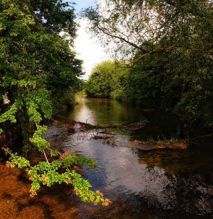 meath: trout trails
