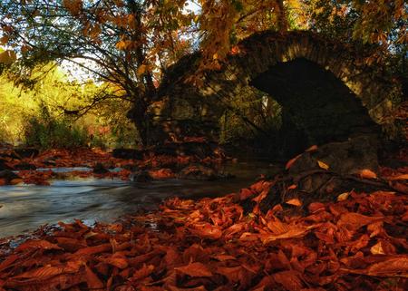 meath: near the old bridge