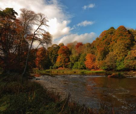 meath: Boyne in autumn