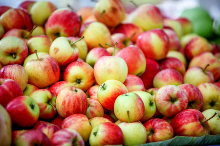 사과: apple